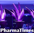 PharmaTimes RBM Team of the Year 2011